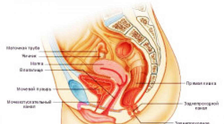 Во время секса презерватив немного остался внутри матки