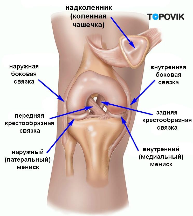 ubehag i nedre del av magen vonx